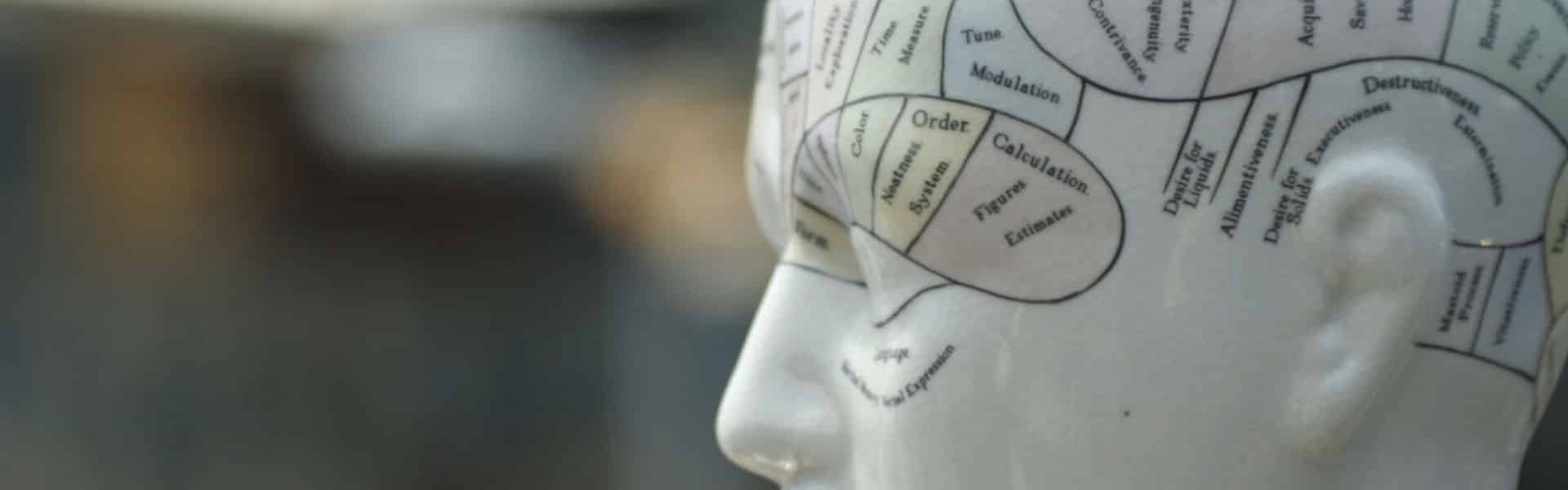 brein activiteit