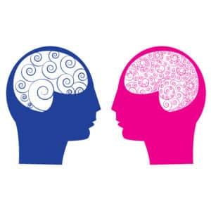 werking brein man en vrouw