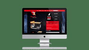 website-ontwerp-concept-vuurwerk4